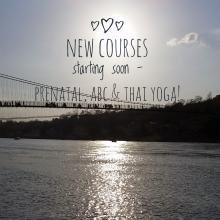 New courses!